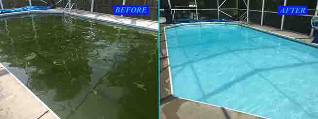 Oasis Pool Service Services